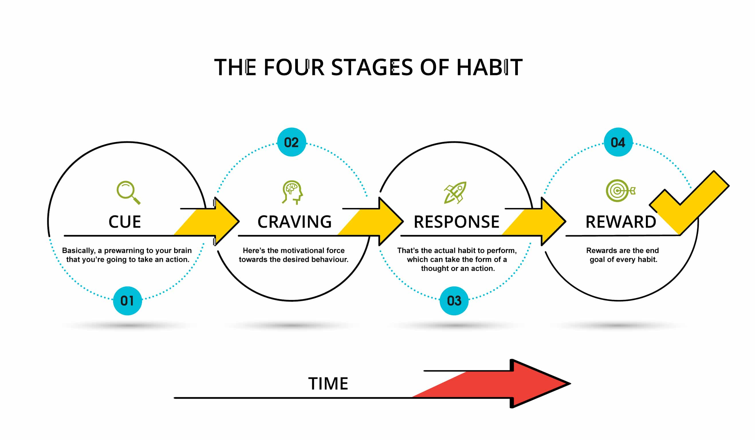 The-four-stages-of-habit